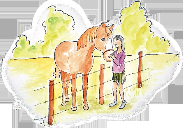 meisje aait paard langs hek